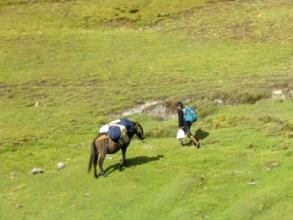 Le guide et sa mule au-dessus de Sorata