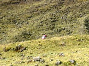 Bergere dans les pentes de la laguna Chillata