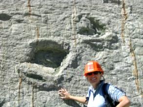 Geraldine (employee Bouygues) nous confirme par sa taille qu'il s'agit bien de dinosaures