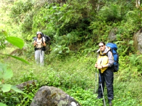 Arrives dans la jungle des Yungas