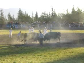 Spectacle d'une peña de taureaux a coté d'Arequipa