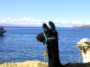 Commo te llamas? (blague du Lonely Planet)