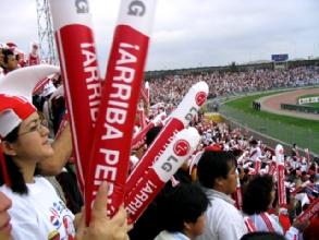 Fanatiques de l'equipe du Perou pendant le quart de finale Perou-Argentine