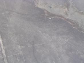 Lignes de Nazca : le colibri