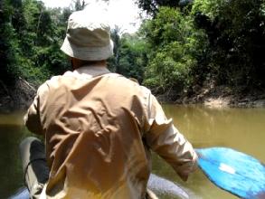 3 heures de pagaie dans la chaleur etouffante de la foret amazonienne