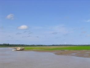 Vue sur l'Amazone