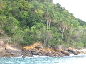 Une arrivee prometteuse a Ilha Grande